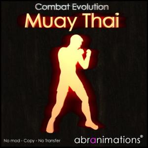 box_cover-muay-thai