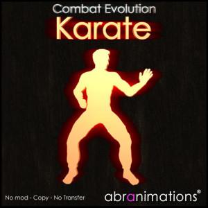 box_cover_karate
