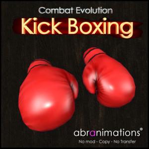 box_cover_kickboxing