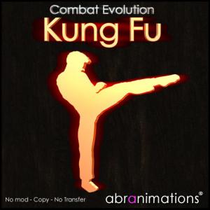 box_cover_kungfu