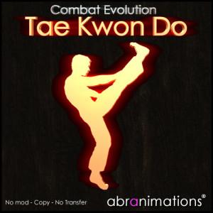 box_cover_tae kwon do